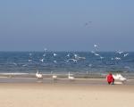 Plaża kołobrzeska od strony wschodniej.