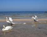 Kołobrzeg. Plaża wschodnia.