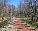 Park nadmorski w Kołobrzegu zachodnim.